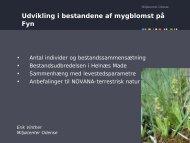 Udvikling i bestandene af mygblomst på Fyn