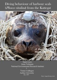 Diving behaviour of harbour seals (Phoca vitulina) from the Kattegat