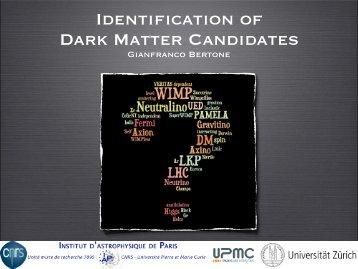 Identification of Dark Matter Candidates