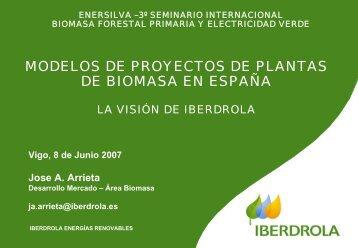 MODELOS DE PROYECTOS DE PLANTAS DE BIOMASA EN ESPAÑA