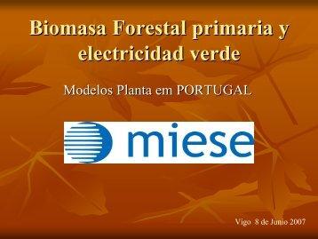 Biomasa Forestal primaria y electricidad verde