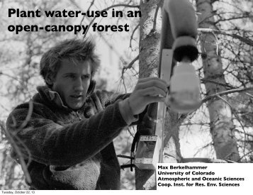 Plant water-use in an open-canopy forest