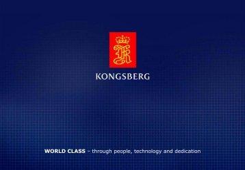 Kongsberg Seatex HMS 100 SHOLS