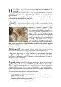 AMARA BERRI - Page 2