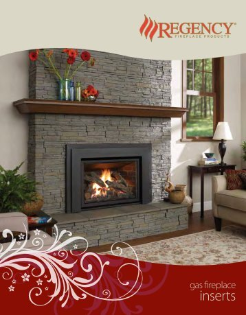 inserts - Regency Fireplace Products