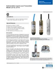 Submersible Liquid Level Transmitter Model LS-10 LH-10