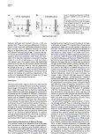 Mirror of PDF - Ed Boyden - Page 6
