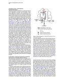 Mirror of PDF - Ed Boyden - Page 7
