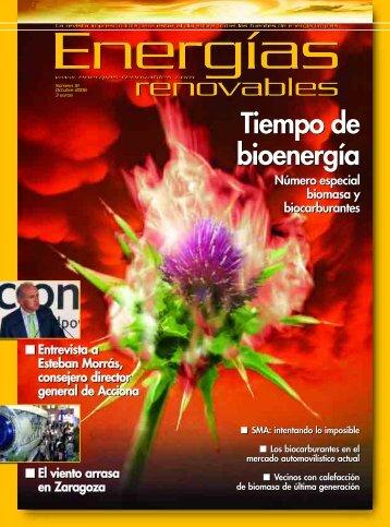 Tiempo de bioenergía