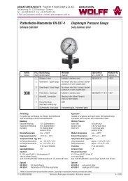 Plattenfeder-Manometer EN 837-1 Diaphragm Pressure Gauge