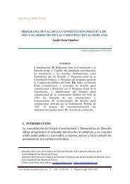 programa penal de la constitución política de 1993 y el derecho ...