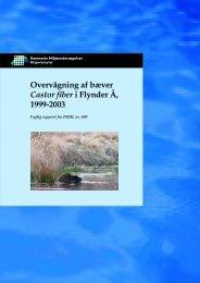 Overvågning af bæver Castor fiber i Flynder Å, 1999-2003