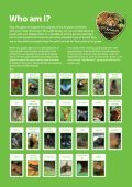 Creatures of the rainforest - Page 3