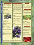 SHRUBS - Page 2