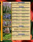 HERBACEOUS - Page 2