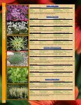 HERBACEOUS - Page 4