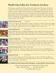 Orienpet Lilies - Page 2