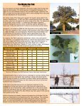 Growing Matters - Page 4