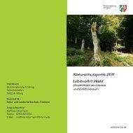 Flyer des Naturschutzpreises 2011 - Bezirksregierung Arnsberg