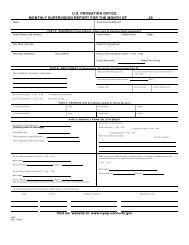 us probation office monthly supervision report