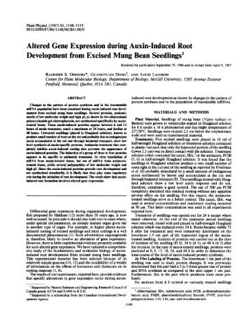Altered Gene Expression during Auxin-Induced ... - Plant Physiology