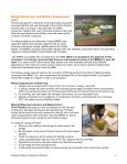 Mango Handling and Ripening Protocol - Page 4