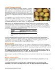 Mango Handling and Ripening Protocol - Page 6