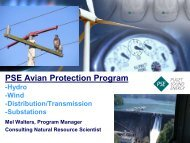 PSE Avian Protection Program