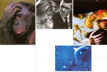 1999 Karte - Neue Galerie