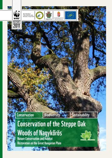 Conservation of the Steppe Oak Woods of Nagykőrös
