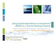 Using Sustainable Return-on-Investment (SROI) as a Tool for Ranking Projects