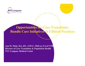Opportunities for Care Transitions Bundle Care Initiatives in Clinical Practices