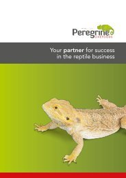 Your partner for success in the reptile business