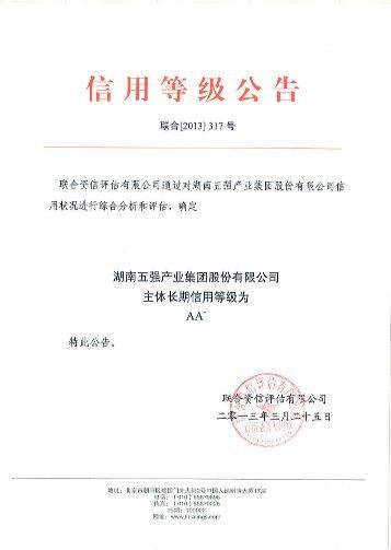 湖南五强产业集团股份有限公司主体长期信用评级报告 - 联合资信评估 ...