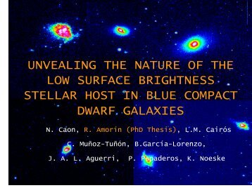 2. The LSB stellar host