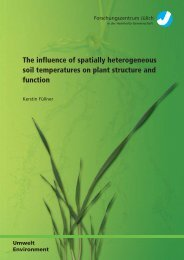 The influence of spatially heterogeneous soil temperatures ... - JuSER