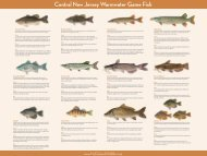 Central New Jersey Warmwater Game Fish