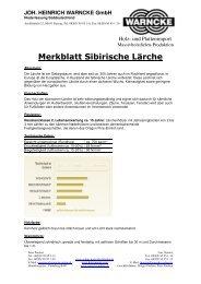 Merkblatt Sibirische Lärche - Joh. Heinrich Warncke GmbH