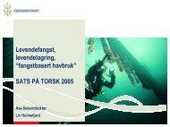 "Levendefangst levendelagring ""fangstbasert havbruk"" SATS PÅ TORSK 2005"