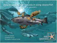 How to educate the industry in using cleanerfish