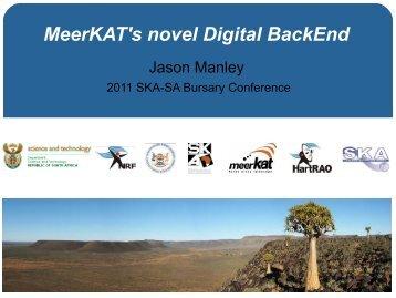 MeerKAT's novel Digital BackEnd