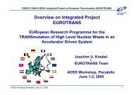 Overview on Integrated Project EUROTRANS