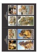 Katalogu Natursteinhandel Katalogu print - Page 3
