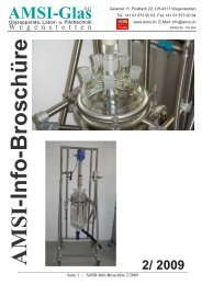 Amsi-Info-Broschüre - AMSI Glas AG, Glasapparate, Labor