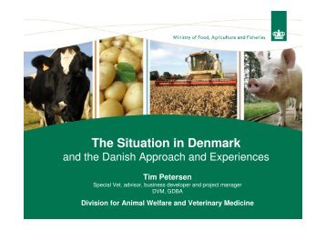 The Situation in Denmark