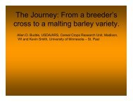 The Journey From a breeder's cross to a malting barley variety