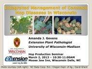 Hop Diseases in Wisconsin