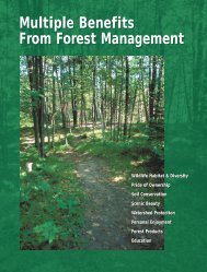 Multiple Benefits From Forest Management
