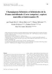 Champignons lichénisés et lichénicoles de la ... - lichenologue.org