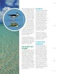 cuba's - Page 6